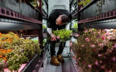 Vertical farm in NYC