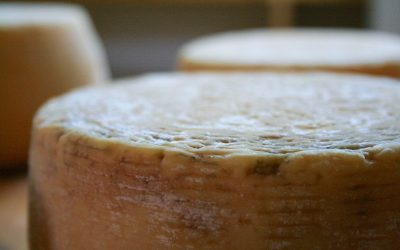 Italy's 24 most beloved cheeses, from north to south