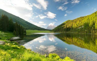 Trentino. Wood, milk, flowers, herbs…. Alpine dairy flavors