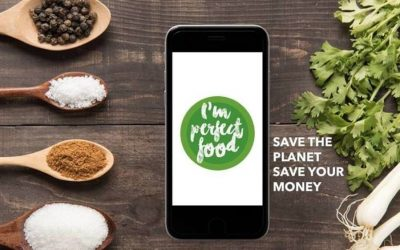Spanish startup against food waste