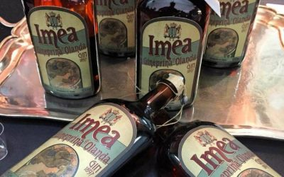Imea, Gineprina d'Olanda: the Italian gin with international appeal