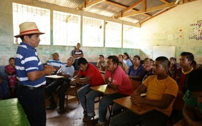 Nobel for ecology recognizes courageous farmers: awards in Guatemala and Slovenia