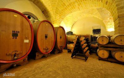 Leone de Castris. «A key meeting place for the wine sector»
