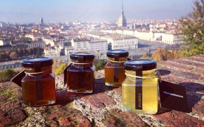 Honey from bee hives on rooftops and museums, this is the urban beekeeping of UrBees
