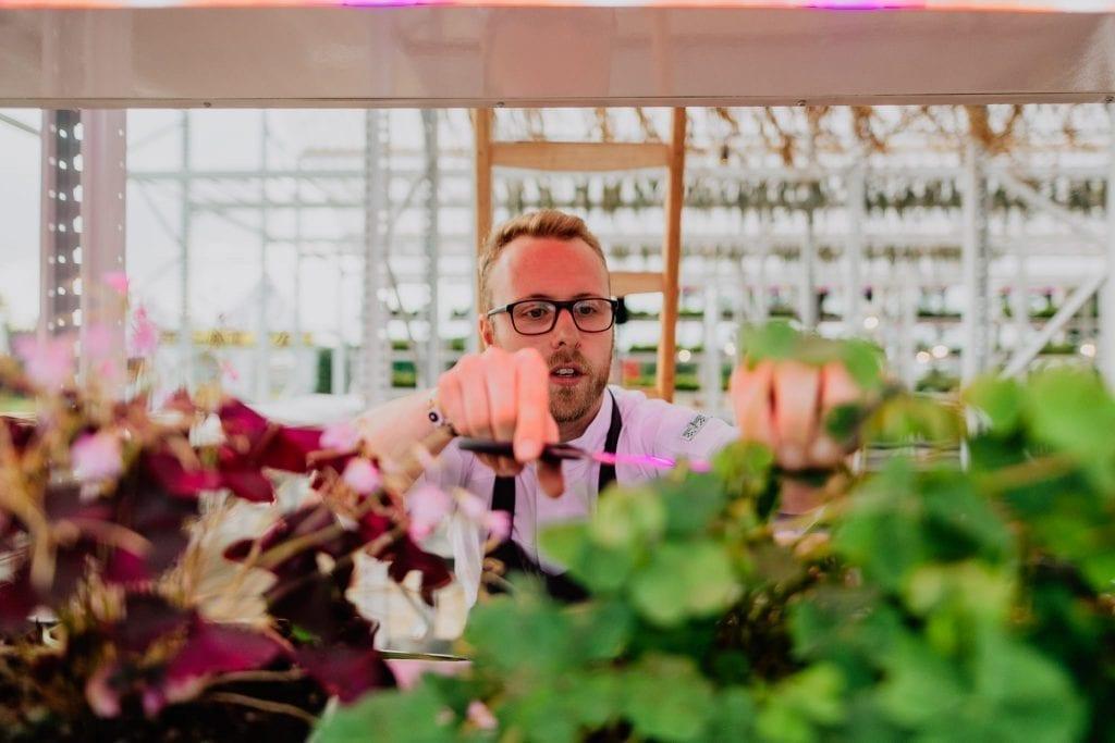 Man growing plants in Brasserie 2050