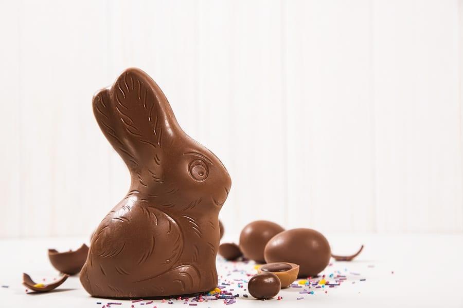 Coniglietto di cioccolato di Pasqua