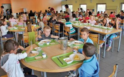 School lunches in Italy: setting a healthy pattern for adult life