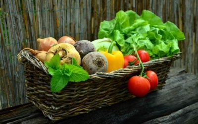 Food sustainability index, France is the first country for food rewenability, Italy comes sixth