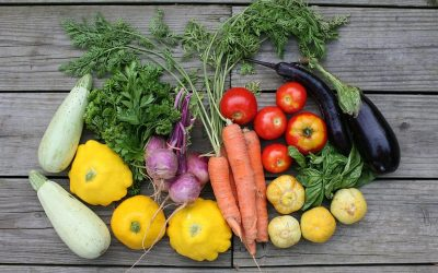 Seasons in the Italian garden: the fruits and vegetables of August