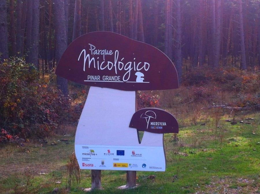 Parco Micologico