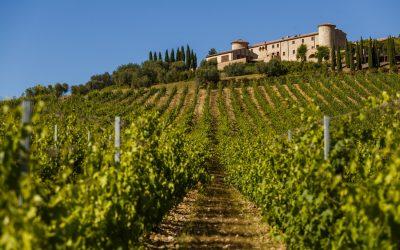 ColleMassari. Winery and Wines