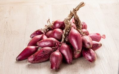 Find out more about Tropea red onions