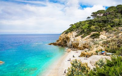 Find out more about Elba and its wine