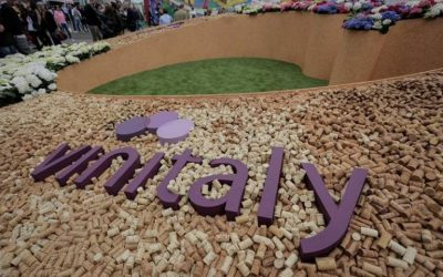 Find out more about Vinitaly 2021