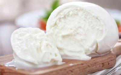 Find out more about mozzarella di bufala