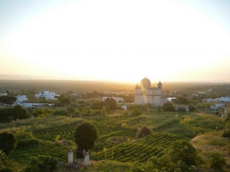 Find out more about the gardens of the grata in ostuni