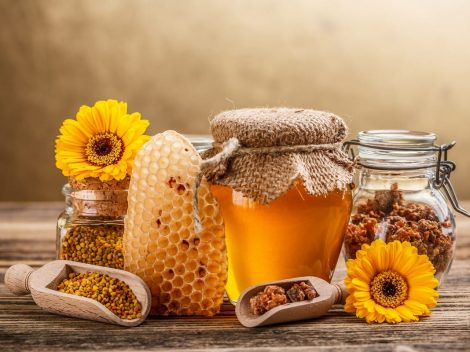 The products of the hive. Properties and uses of pollen, royal jelly and propolis
