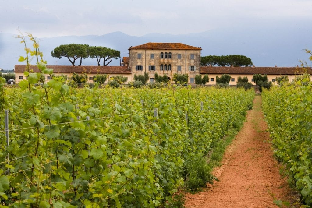 Find out more about Casale del Giglio