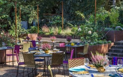 Find out more about dining surrounded by greenery in Rome