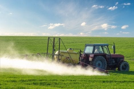 Find out more about pesticide ban
