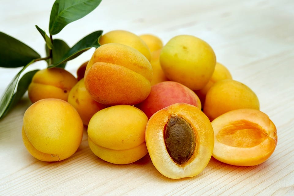 Find out more about apricots