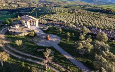 Find out more about Tenuta Olianas