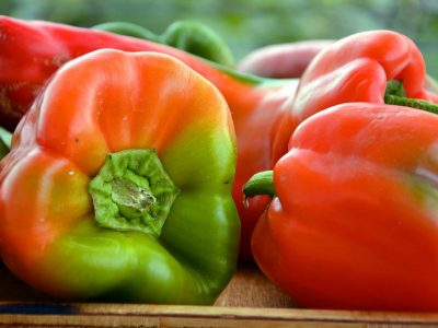 Find out more about fruits and vegetables of august