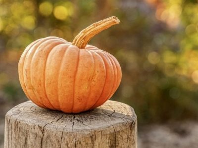 Find out more about October seasonal fruits and vegetables